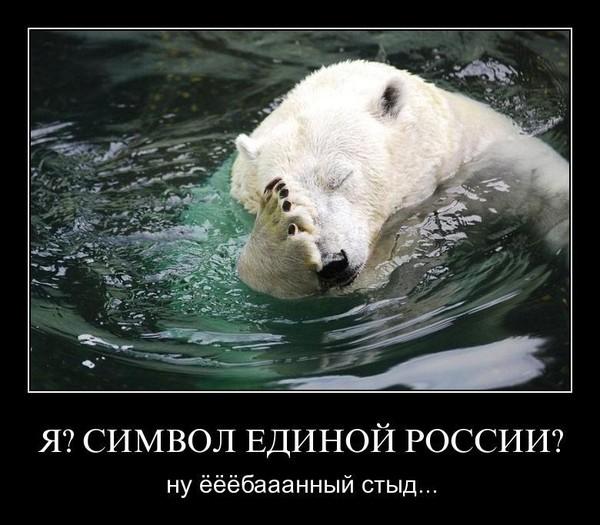 символ единой россии медведь фото
