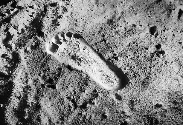 высокоурожайный, фотографии следов американцев на луне них проник подъезд