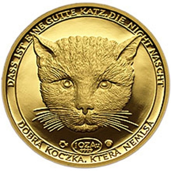считается картинка награда кошки