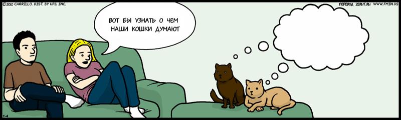 Картинки о чем думают коты