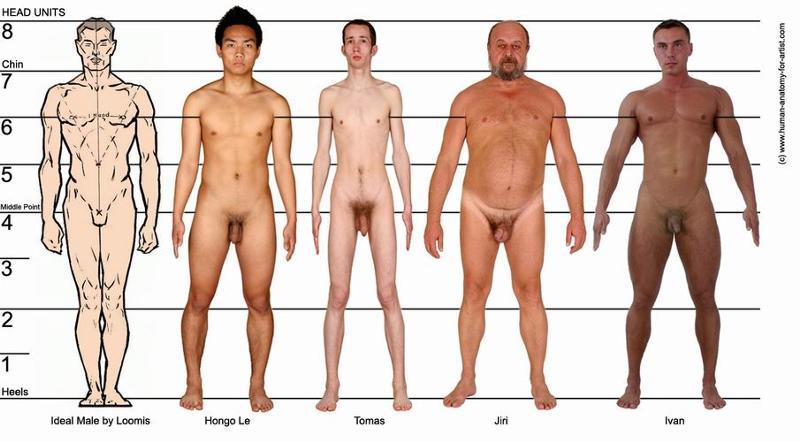 части тела женщины и секс