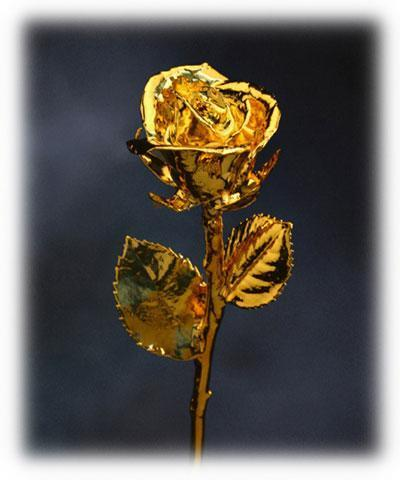 картинки золотая роза