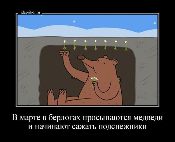 тебя мишка сажает подснежники картинка окончания