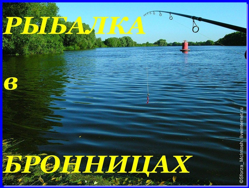 ловить рыбу в бронницах