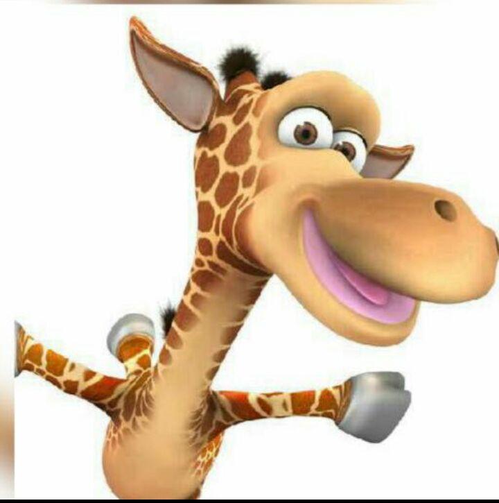 Ставишь фото жирафа на аву