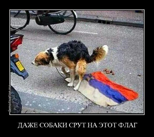 Следком РФ завел уголовное дело на Парасюка - Цензор.НЕТ 6569