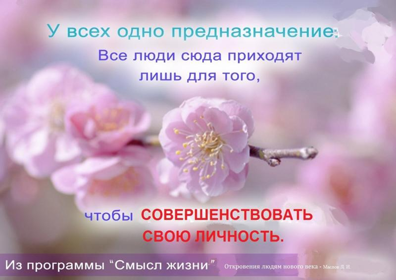 Счастье и смысл жизни человека реферат 504