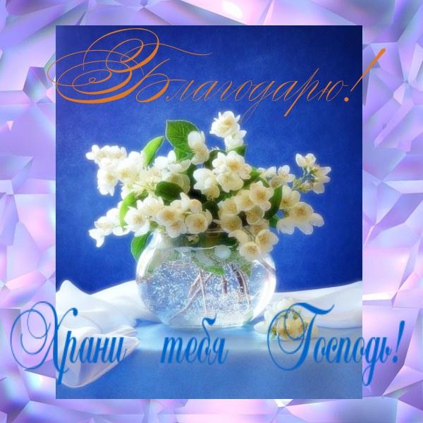 Надписями, открытки с благодарностью богу и пожеланиями