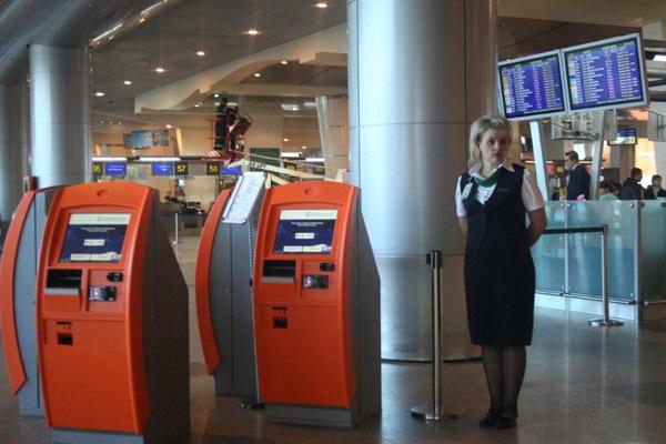 Можно ли в аэропорту домодедово купить билет