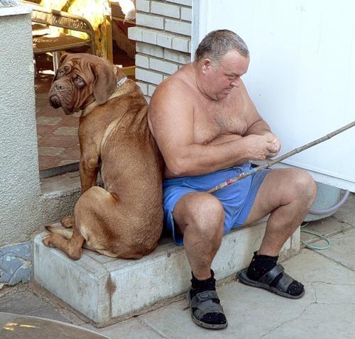 мужчина собака и рыбалка
