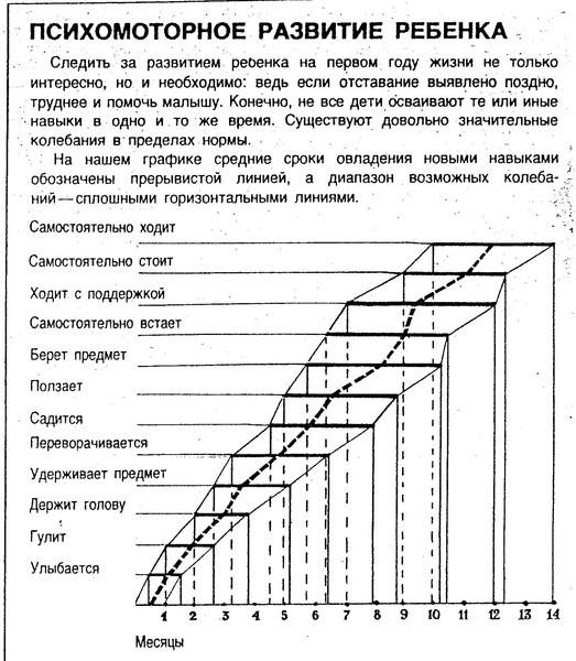 https://otvet.imgsmail.ru/download/380567e532e656edaee215792b254d9b_i-270.jpg