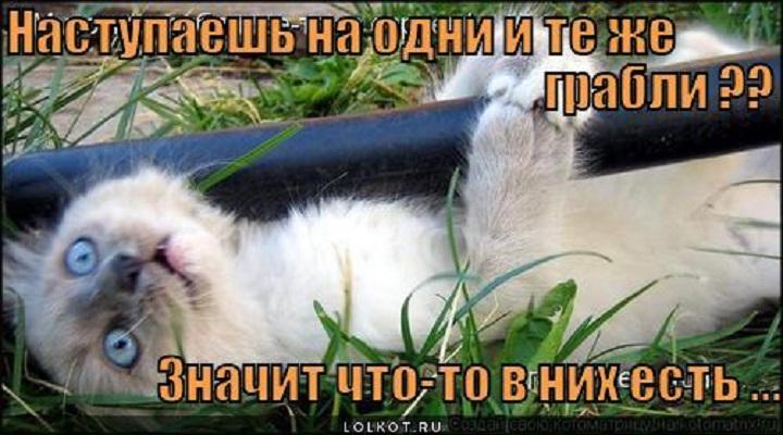 3963947_ed14fc04ac4c64ff0820664d279d3dc3_800.jpg