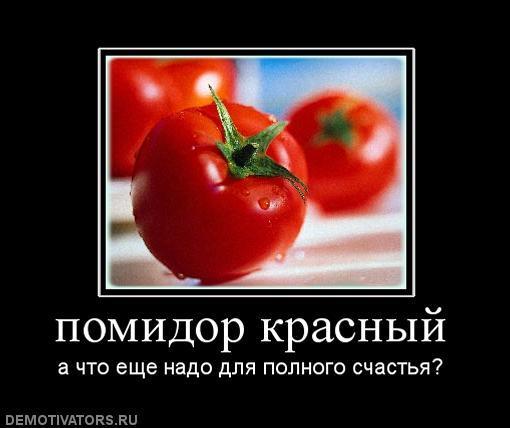 Вдуть по помидоры