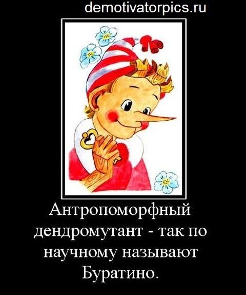 https://otvet.imgsmail.ru/download/39d63c3fafc225b05730b15bc66b4f51_i-12777.jpg