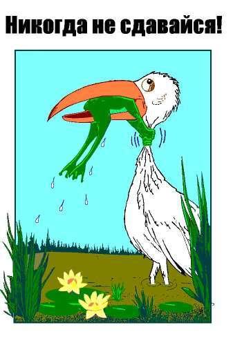 Картинки лягушка и цапля никогда не сдавайся