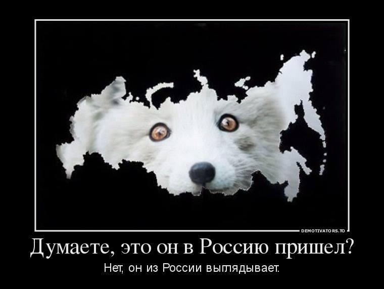 Санкции против российских олигархов будут началом победы, - Климкин рассказал о разговоре с американским сенатором в 2014 году - Цензор.НЕТ 4321