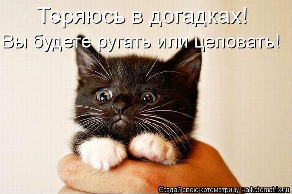 411a1f4280e8112573915c9b0499517f_i-91.jpg