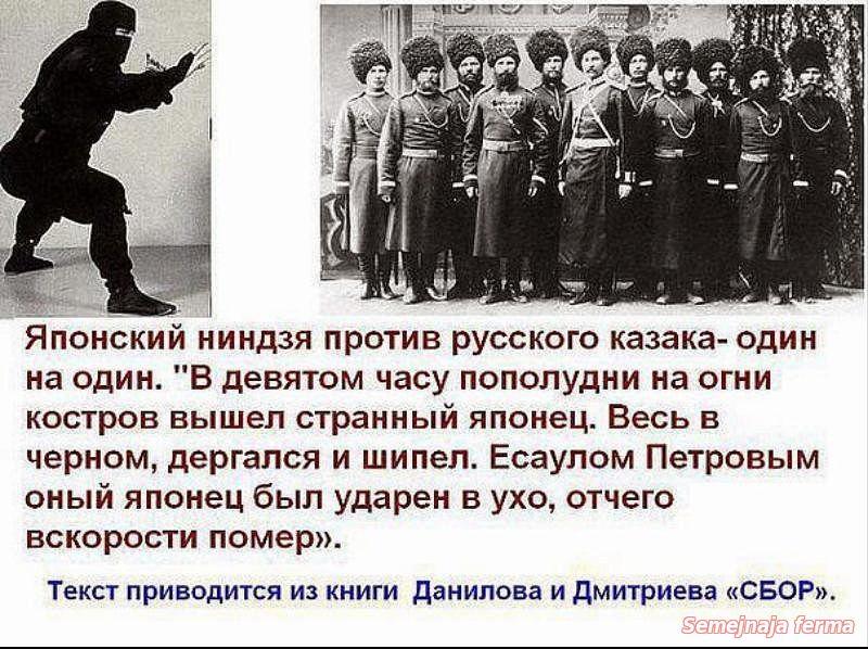 https://otvet.imgsmail.ru/download/4147484_e6d64f23ab221e1c5d07c4bc424bce1e_800.jpg