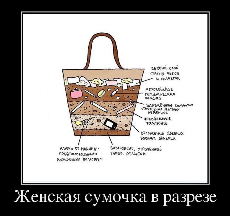 женская сумка картинка прикол закрытые системы