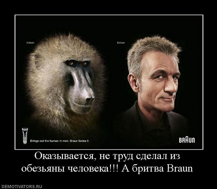 Труд сделал из обезьяны человека картинка