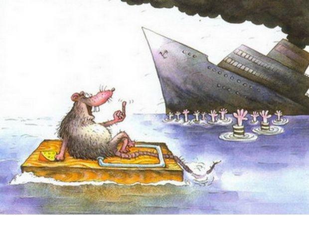 Крысы на корабле картинка