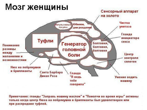 muzhika-boltovnya-vo-vremya-seksa-zhmzh-video-porno