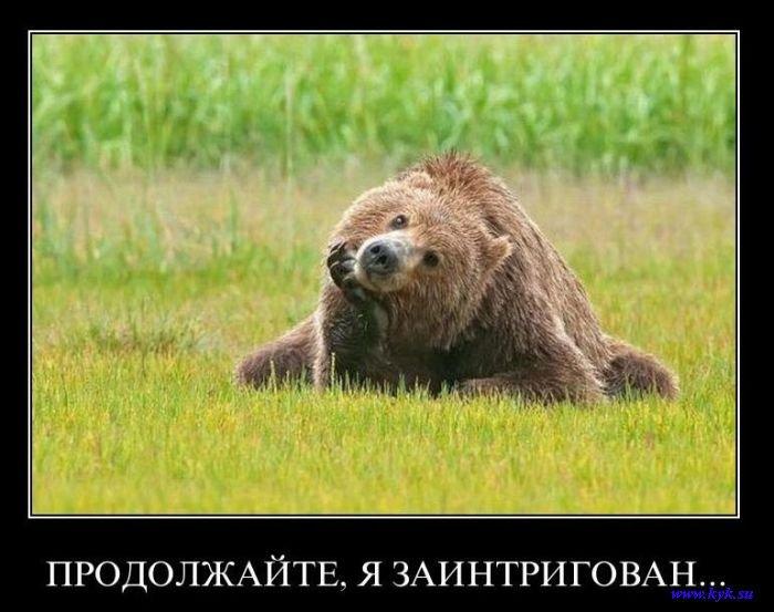 """Глава Роскомнадзора: """"Ребенку младше 10 лет вообще не стоит выходить в интернет"""" - Цензор.НЕТ 3546"""