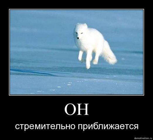 Средняя цена российской нефти Urals в январе упала в 1,6 раза до $28,75 за баррель, - Минфин РФ - Цензор.НЕТ 1339