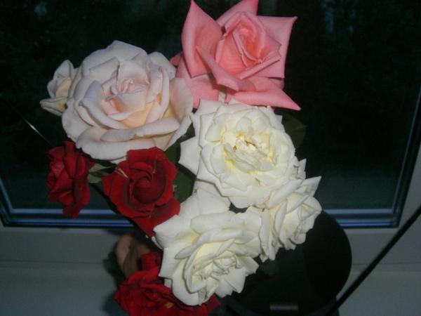 Розы дома в вазе фото