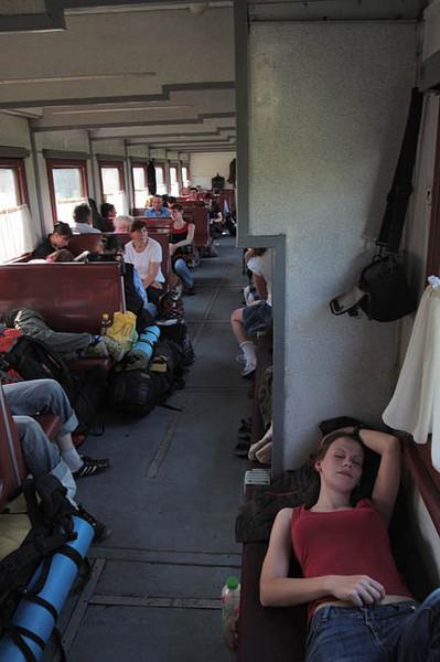 фото общего вагона москва рига собакой дратхаар стал