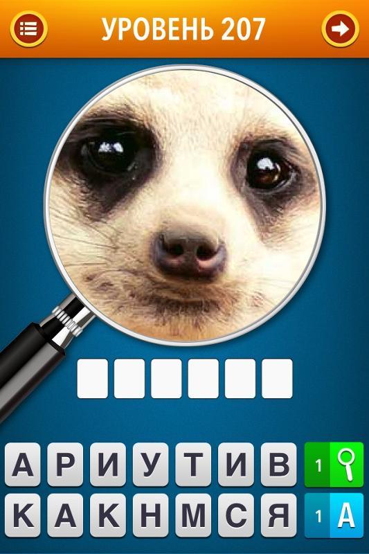 Правильные ответы к игре угадай фото