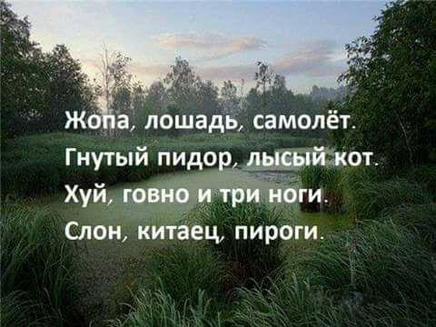 https://otvet.imgsmail.ru/download/44618641_0b3fb6c624e97425c18d498c330727ce_800.jpg