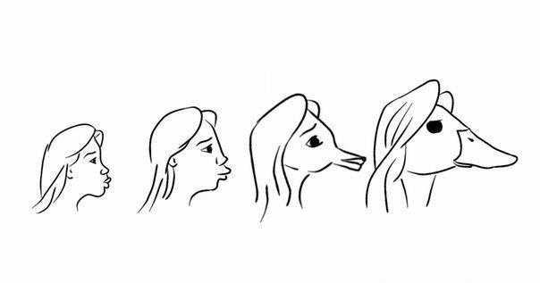 Утиные губы картинки приколы