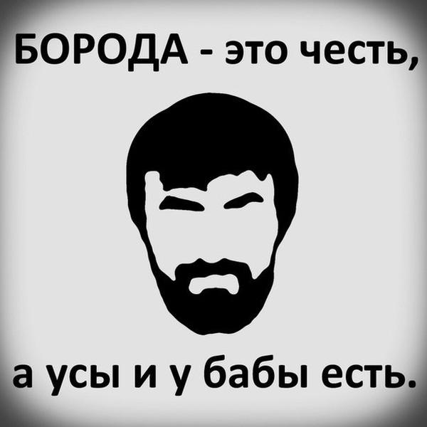 Картинки приколы про бороду