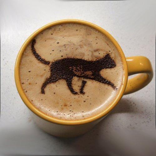 Смешные картинки пойдем пить кофе, крутые