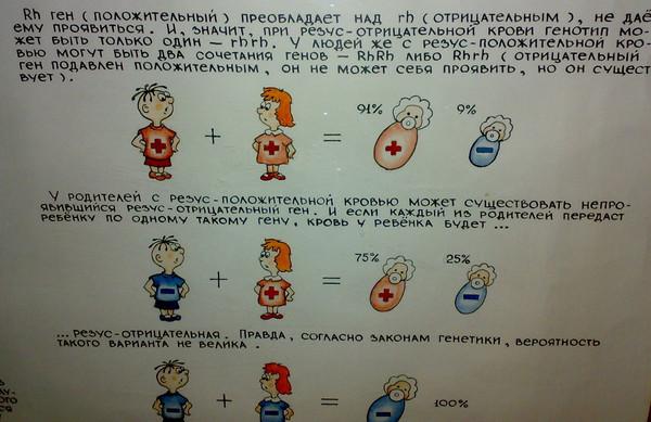 Феномен четвертой группы крови  Обзор паранормальных