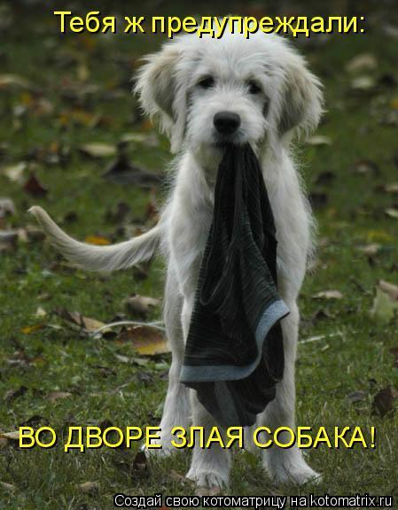 милана волконская диетолог