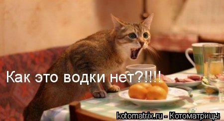 https://otvet.imgsmail.ru/download/4768be60c7059ee80cf12cdf61aaca9c_i-255.jpg