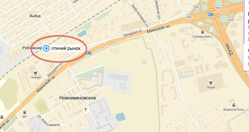 аренды магазин г ростов борид 1соглебское шоссе модель вызовет