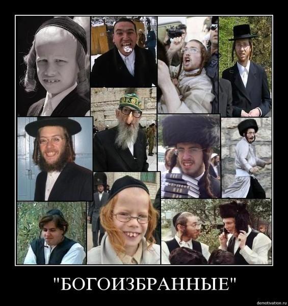 Фото евреев и русских сравнить