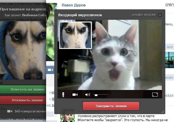 https://otvet.imgsmail.ru/download/4b6eefab8010b36469680887dca34801_i-407.jpg