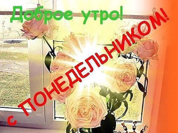 https://otvet.imgsmail.ru/download/50539282_6d44eb3738566f75a9b7361138dc69bd_800.jpg