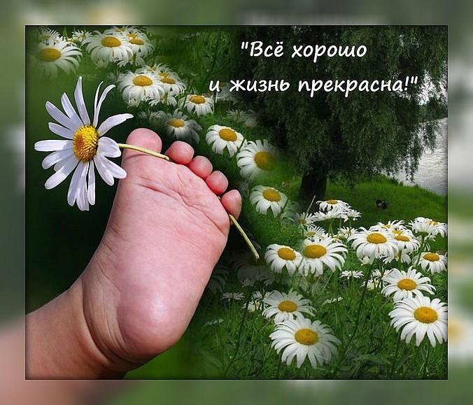 Умей понять, умей простить, ведь это значит - просто жить!
