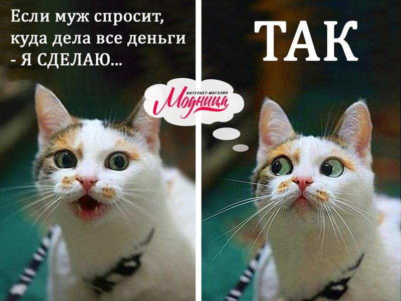 https://otvet.imgsmail.ru/download/51799736_983aac068b5990a79fb0731d9524869c_800.jpg