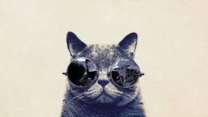 кот очки мордочка без смс