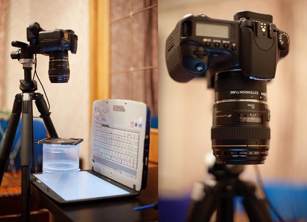 деталями оформления фотоаппарат пересъемка слайдов фоамирана