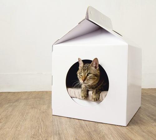 cheap cat carry box