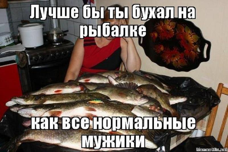 Демотиватор лучше бы ты бухал на рыбалке как все