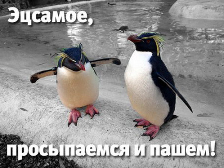 https://otvet.imgsmail.ru/download/53971720_9cb96668c6ccb95889ffab68e5d16636_800.jpg