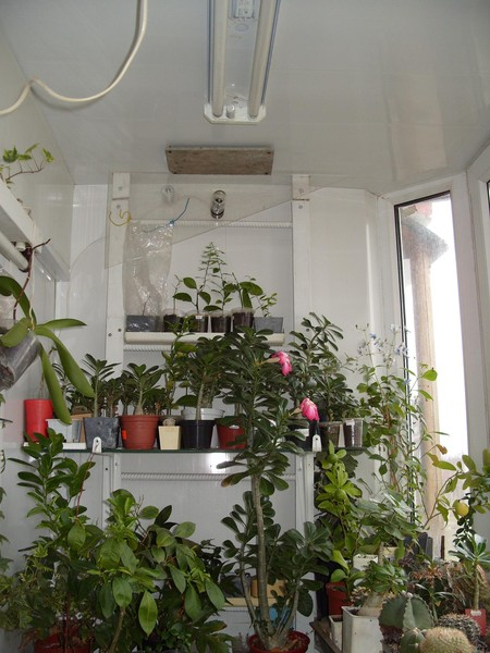 Ответы@mail.ru: на застекленном неотапливаемом балконе при т.